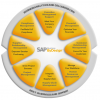 Friday Rant: SAP - Betting on the Half-Life of the Frictionless On-Demand Platform