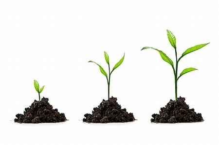 Enterprise 2.0: Maturing into the mainstream