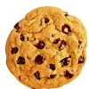Eat That Cookie! & What I learned from a chance meeting at the airport