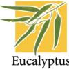 Eucalyptus 2.0