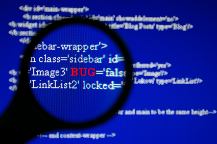 Ten great software glitches for 2010