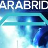 News Analysis: Clarabridge Raises $80M in Funding For Expansion