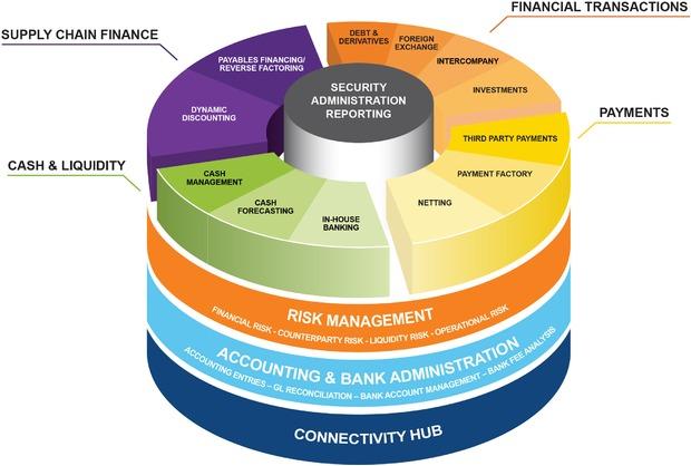 Large Enterprise Cloud Financial Accounting Software Adoption