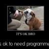 Developer-Friendly BPM