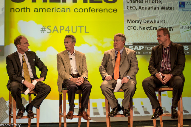 SAP For Utilities 2014 Exec Panel