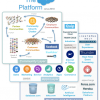 Assessing Salesforce's platform and ecosystem