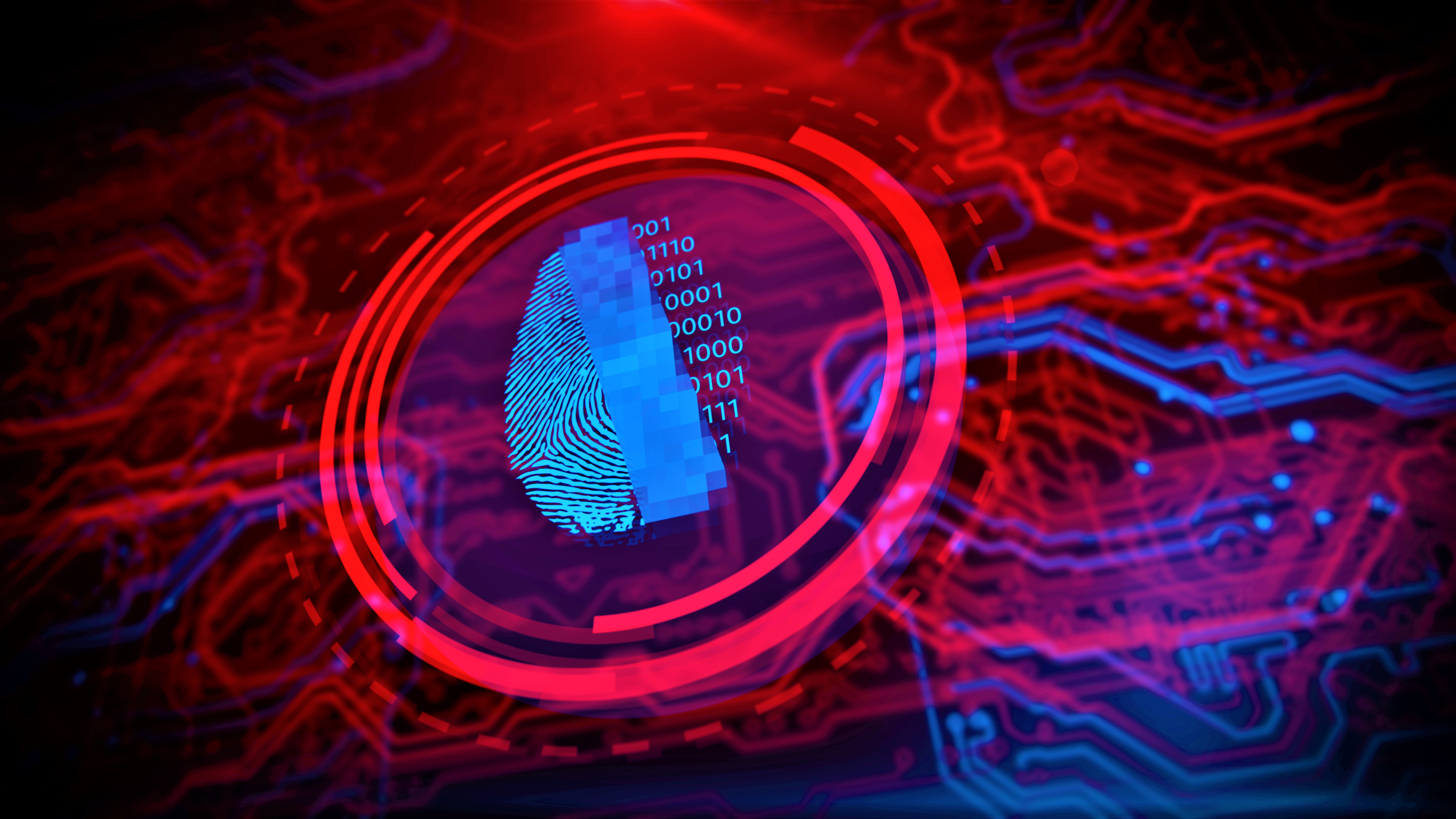 Cybersecurity and fingerprint network security.