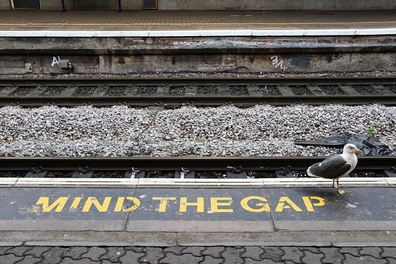 Mind the gap railway photo with pigeon