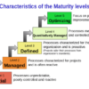 The Holy Grail of the Repeatable Sales Process:  Is Repeatability Enough?